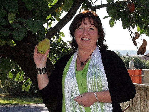 Před obecním úřadem roste jediný strom s kdoulemi v Dyjákovicích. První dáma obce Jaroslava Němcová je na něj náležitě pyšná.