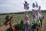 Spolek přátel Hroznové kozy v pestrém průvodu vynesl Hroznového kozla do vinic.