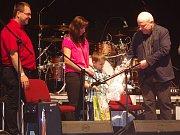 Velký koncert pro nemocného Míšu uspořádala znojemská Oblastní charita. Více než tři sta tisíc z výtěžku vstupného pomůže k chlapcově léčbě.