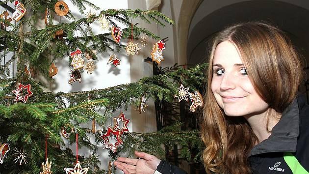 Výstava vánočních květinových aranží na znojemském hradě.
