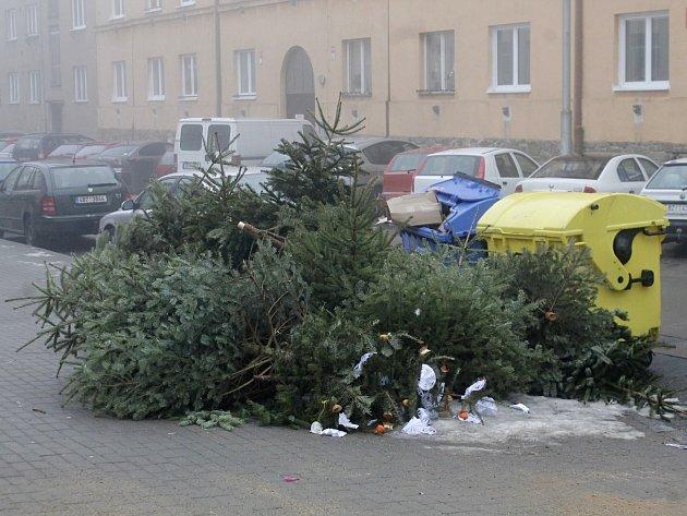 Pohodit vánoční stromek na ulici je zakázané, patří ke kontejnerům na tříděný odpad. Lidé to ale často ignorují.