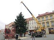 Do Znojma přijel vánoční strom.