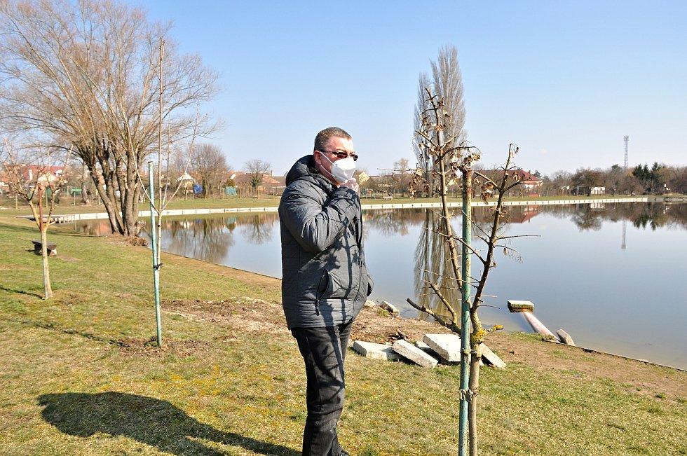 O unikátní soustavu rybníků v Hevlíně se stará obec spolu s rybářským spolkem. Na snímku místostarosta Václav Čaj při kontrole vysázené zeleně