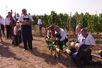 Tasovičtví vinaři v sobotu poprvé vyšli do vinic, aby tam podle starého obyčeje oslavili zarážení hory.