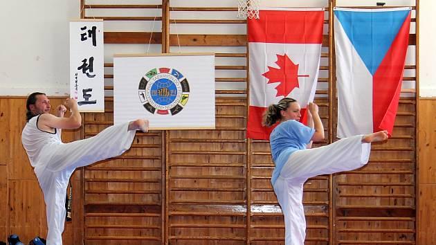 Znojemští taekwondisté se pečlivě připravují na světový šampionát pod dohledem svého učitele Františka Macka.