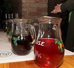 Stovky lidí si v sobotu 2. února našly cestu k jaroslavickým vinařům. Ti nalévali zajímavá mladá vína ročníku 2018. A nejen je.