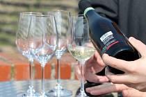 Jak chutná víno uprostřed vinohradu? Lidé to mohou vyzkoušet v Karolíniných sadech.