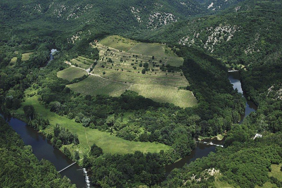 Známá vinice Šobes v Národním parku Podyjí.