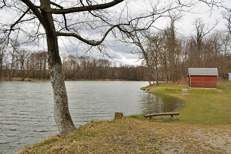Rybník v obci Břežany
