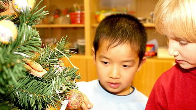 Dvanáct vánočních stromečků, které se budou sedmnáctého prosince dražit v Althanském paláci, si rozebrali znojemské základní školy. Jejich žáci na ně vyrobili ozdoby a na stromeček je pak společně navěsili.