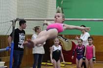 Znojemské gymnastky oslavily bronz ze závodů v Uherském Ostrohu.