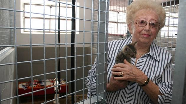 Štěpánka Faglerová v nově otevřeném útulku pro kočky