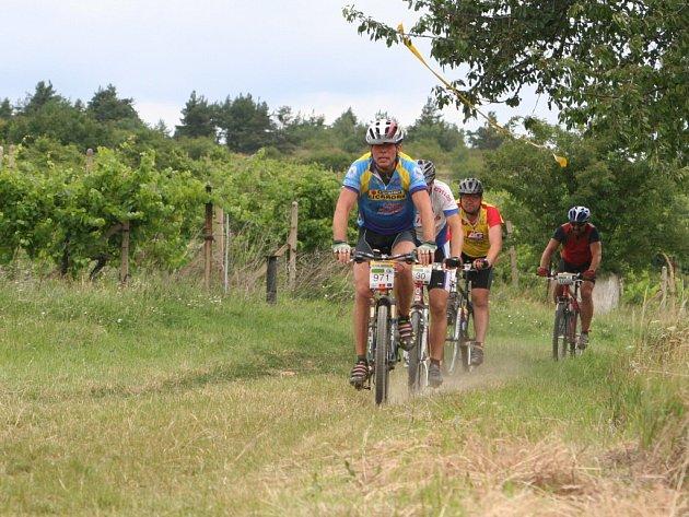 Znovín Cup 2007 mezi vinohrady