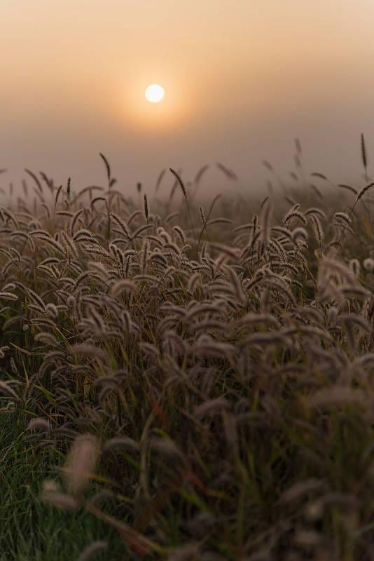 Podzimní přiroda na Znojemsku.