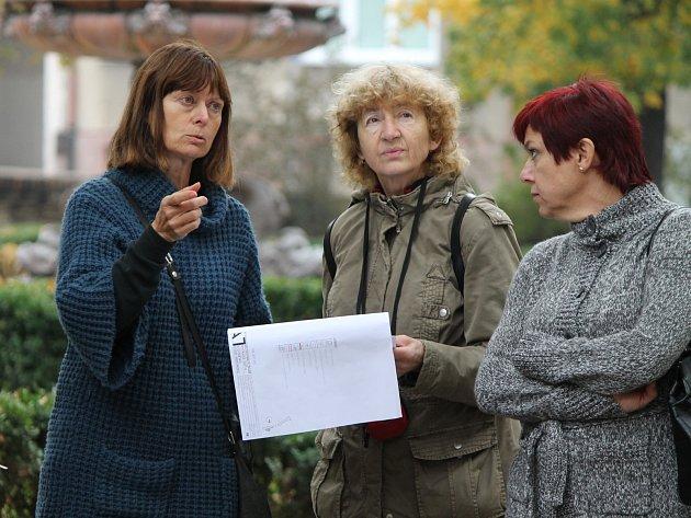 Památkáři, úředníci a architektka Eva Wagnerová se seznamovali s tím, které stromy padnou k zemi při blížící se revitalizaci Dolního parku ve Znojmě.