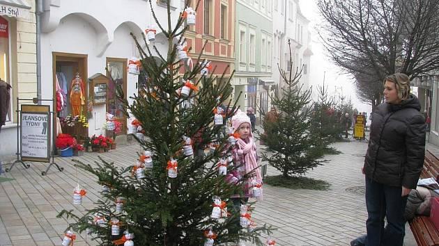 Čtyřiadvacet ozdobených vánočních stromečků krášlí od pátku Obrokovou ulici ve Znojmě. Stromky nechala radnice nainstalovat na hlavní pěší zónu bez ozdob.