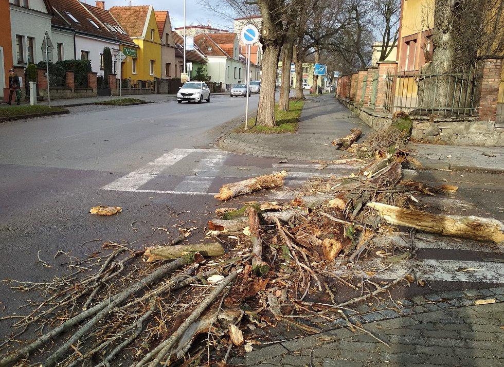 Silný poryv větru vyvrátil část vzrostlého topolu v ulici Jubilejní park. Strom spadl na přechod pro chodce v sousedství školy.