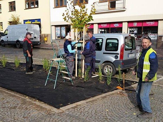 Náměstí T. G. Masaryka v Moravském Krumlově se dočká výměny zeleně.