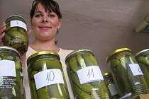 Na třicet vzorků nakládaných okurek posoudí ve středu porotci ve Znojmě. Začne tak novinka letošní sezony - Okurkové dny.