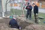 Hroby nejméně dvanácti německých vojáků padlých v samém závěru druhé světové války našli v úterý ve Vrbovci archeologové z Moravského zemského muzea v Brně. Podle identifikačních známek mezi nalezenými ostatky potvrdili i nález těla Kurta Knispela.