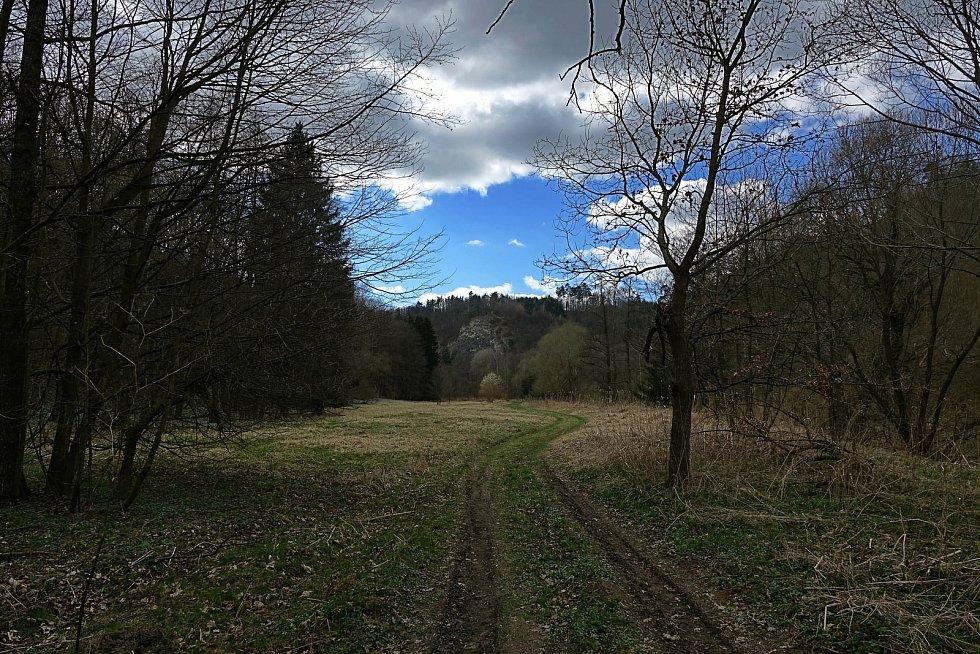 Procházka proti proudu Dyje nad Vranovem.