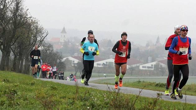Loňský běžecký závod Avanti běh Podyjím provázelo typicky dušičkové počasí.