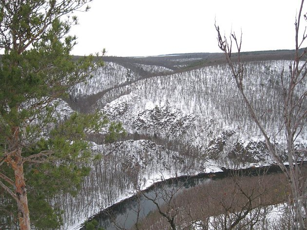 Sněhový poprašek dává vyniknout tvarům. Kaňon Dyje a rokle Mločího údolí ze Sealsfieldova kamene.