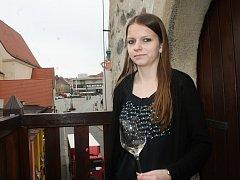 Od 1. dubna je opět v provozu informační centrum VOC Znojmo ve Vlkově věži.