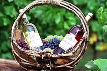 Vína šatovského vinaře Romana Poláka