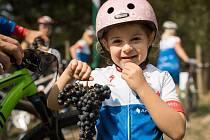 Loňského ročníku znojemského Kola pro život se zúčastnilo 2 600 lidí.