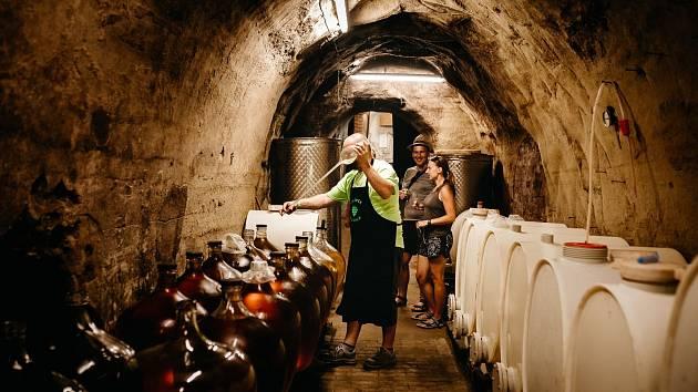 Hrádečtí vinaři otevřou sklepy.