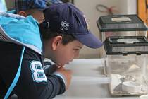 Tradiční akce Jihmoravského muzea s názvem Hurá na prázdniny láká vždy v červnu školní děti. Prožijí dopoledne plné zábavy i poučení.