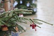 Také letos se mohou na Masarykově náměstí ve Znojmě pokochat děti živými ovečkami.