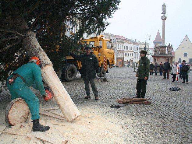 Instalace vánočního smrku ve Znojmě