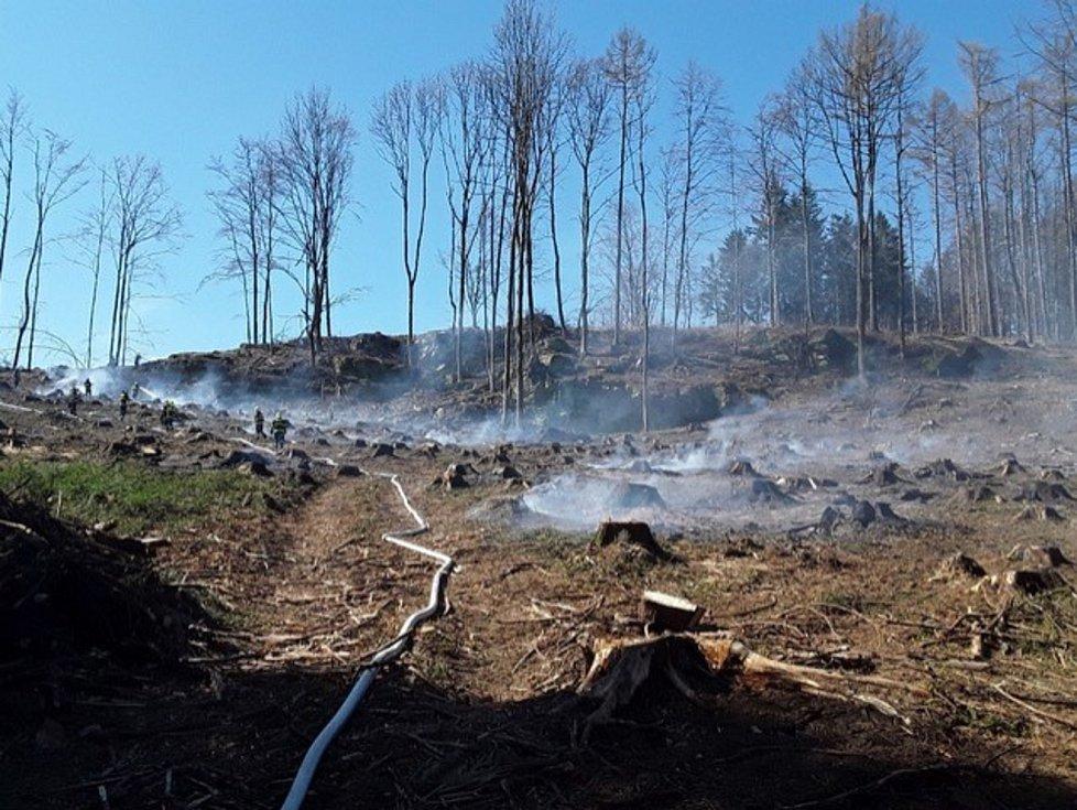 Požár zbytků lesa u Tasovic a jeho hašení.