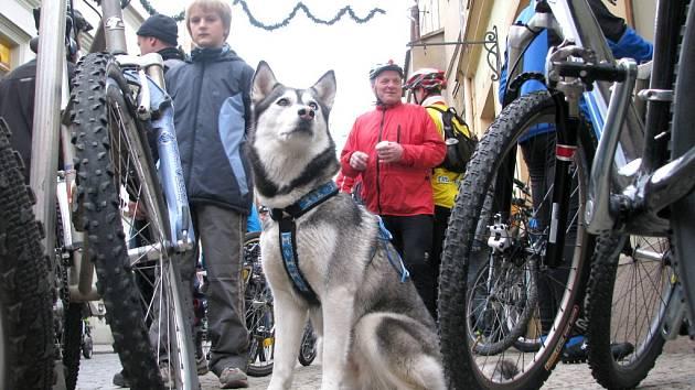 Cyklisty na vyjížďce hlídala Polárka.