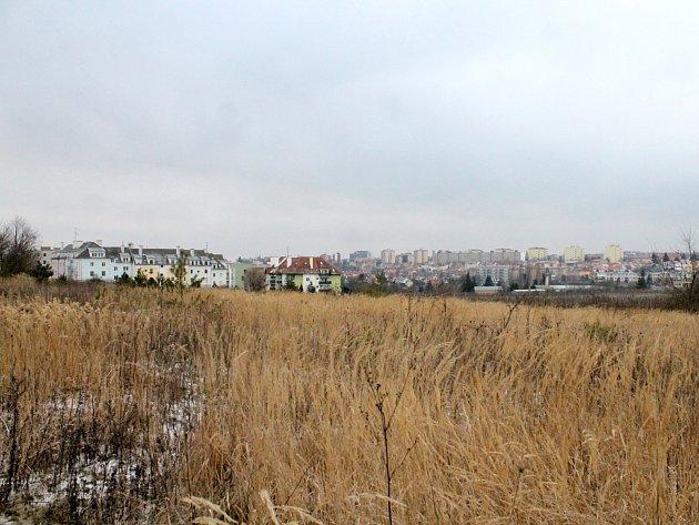 Dnes nevyužívaný pozemek u Městského lesíka by mohl v budoucnu ožít. Město zde zamýšlí výstavbu rodinných i bytových domů.