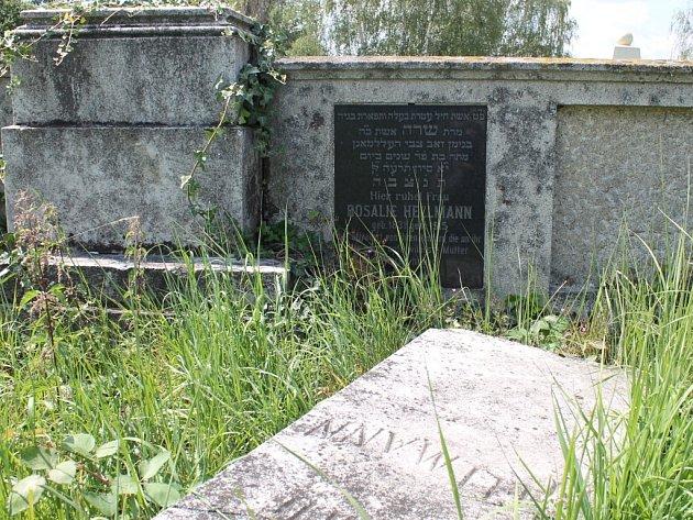 Židovský hřbitov doznává od loňska oprav a úprav, které mu mají vrátit důstojnost.
