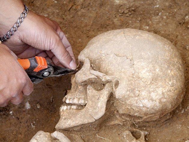 Kostru ženy nalezli archeologové na trase budoucího obchvatu Znojma nedaleko kruhového objezdu v Suchohrdelské ulici. Průzkum vede David Humpola.