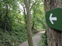 V zámeckém parku v Kravsku vybudovali pracovníci Lesů ČR novou naučnou stezku.