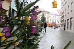 Děti ze znojemských mateřských a základních škol zdobily vánoční stromečky na Obrokové ulici v centru města.