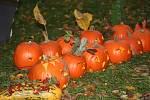 Halloweenské dýňohrátky v Božicích.