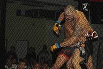 Čtvrtý ročník galavečera bojových sporů a thajského boxu MMA Gladork arena