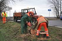 Silničáři odklízejí následky vichřice Emma u silnice spojující hlavní tah ze Znojma na Brno s hraničním přechodem Hevlín.
