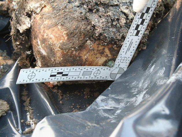 Pozůstatky lidského těla, které policie našla v Žeroticích