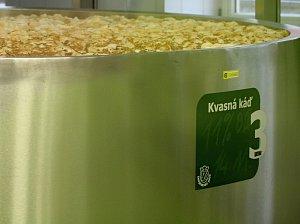 Znojemský pivovar oslavil 17. listopadu 2017 druhé narozeniny.