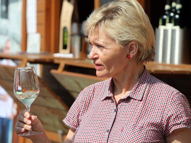 Festival vína VOC ve Znojmě.