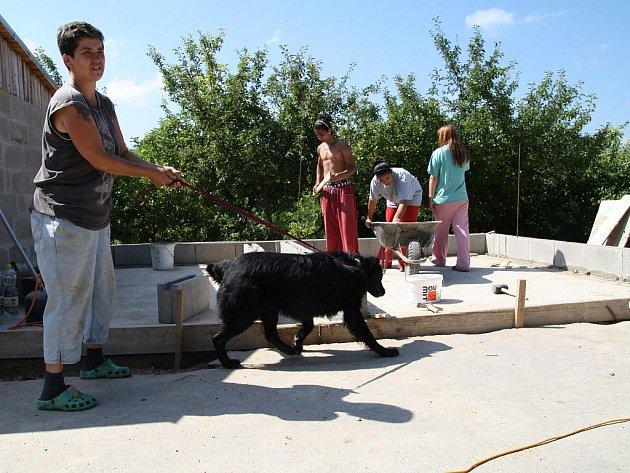 Jeden ze psích svěřenců útulku  se při procházce pomazlil s dětmi, které i pro něj staví kotec.