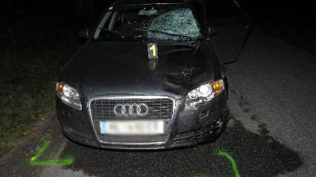 """V noci na pátek zahynul u Dyjákoviček padesátiletý muž. """"Chodec vedl ve večerních hodinách silnici třetí třídy mezi Dyjákovičkami a Hnízdem jízdní kolo. Srazilo ho projíždějící Audi s třiatřicetiletým řidičem,"""" popsal policejní mluvčí Bohumil Malášek."""
