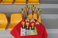 Okresní fotbalový svaz Znojmo uspořádal v úterý tradiční turnaj výběrů. Zúčastnili se ho zástupci Znojma, Brna, Bratislavy a Trnavy.